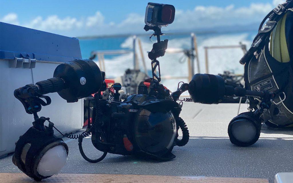 【上級】水中写真の始め方を徹底解説!! ③ 水中一眼カメラ 大公開【Nauticam, ハウジング】