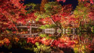 【国内旅行】絶対間違いない!!京都・紅葉おすすめ写真スポット ベスト5【Go To, 旅写真,まとめ】