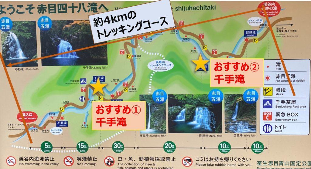 【国内旅行】三重にこんな素敵スポットが!!紅葉・赤目四十八滝に行ってみた【Go To, 旅写真】